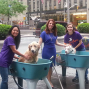 Charity Dog Wash on Fox & Friends